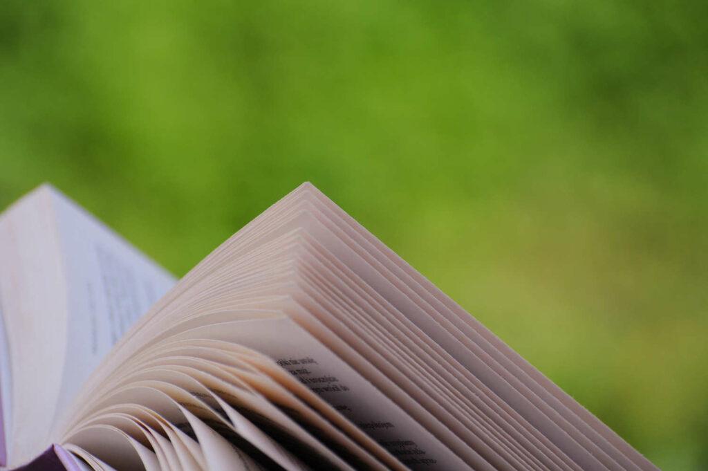 Buch vor grünem Hintergrund
